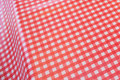 Lightweight coated fabric in red-white kitchen checks.