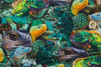 Cotton-jersey with colorful lizards