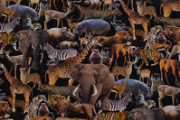 Black cotton-jersey with wild animals in digital-print