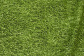 Deko-fabric with grass-motif.
