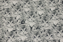 Medium-thickness cotton-canvas with grey cats