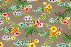 Medium-thickness cotton-canvas with pineapple