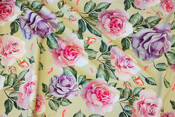 Cotton-jersey in delicate light green with roses