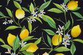 Lemons are ca. 2-4 cm.