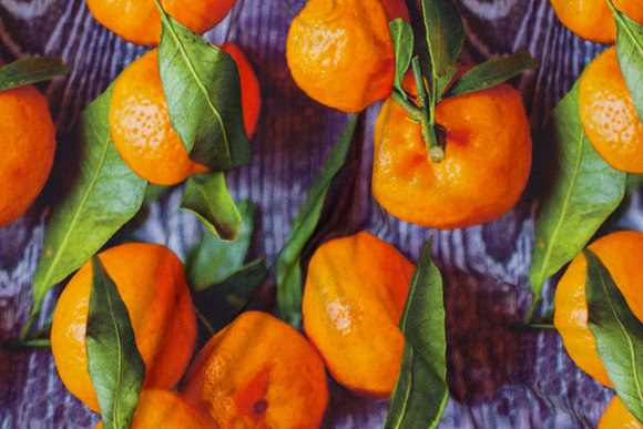 Cotton-jersey with clementines