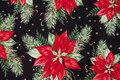 Christmas Star is ca. 10 cm.
