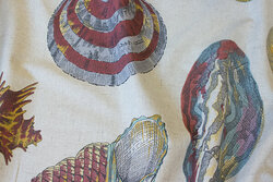 Linen-colored cotton and and polyester with big conchs
