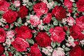 Roses are ca. 2-4 cm.