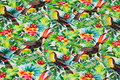 Cotton-jersey with toucans.
