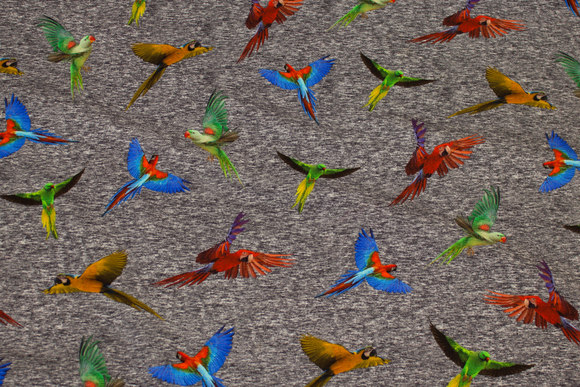 Grey-speckled cotton-jersey with colorful parrots