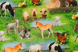 Cotton-jersey with cute farm animals