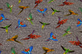 Grey-speckled cotton-jersey with colorful parrots.