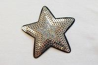 Silver star sequin 8 cm
