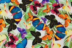 White cotton-jersey with multicolored butterflies