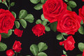 Black patchwork-cotton with strong red roses
