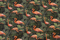Forest-green cotton-jersey with flamingos