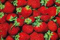 Berries are ca. 5 cm.
