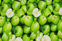 Cotton-jersey with green apples in digital-print