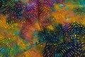 Batique-cotton in multicolors