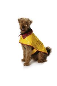 Dog coat. Burda 7752.