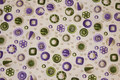 Off white patchwork-cotton with purple and green pattern