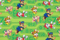Green cotton-jersey with Paw Patrol