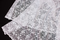 Beautiful, white soft tulle-lace with small flowers in shiny embroidery