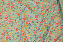 Organic cotton-jersey in apple-green with flowers