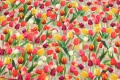 Cotton-jersey with tulips