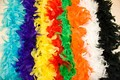Feather boa in many colors.