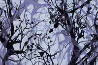 White cotton-jersey with branches in black and light dusty-purple