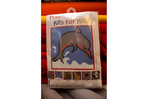 Childrens embroidery with dolphin