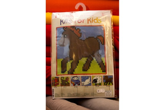 Childrens embroidery with foal