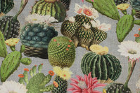 Medium-thickness cotton with cactusses in digital-print