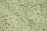 Delicate light green lace-fabric