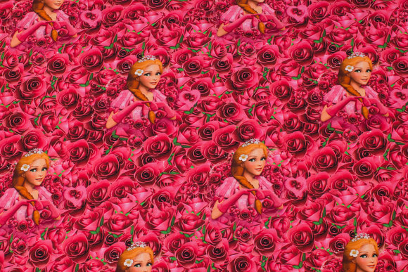 Cotton-jersey with roses and princesses