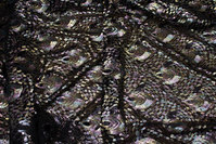 Beautiful sequins-fabric with peacock-pattern on black base of mesh