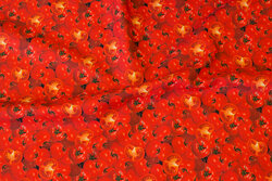 Cotton-poplin with lots of tomatos