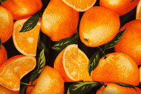 Big oranges on patchwork-cotton.