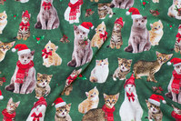 Green christmas-cotton-jersey with cute christmas-cats