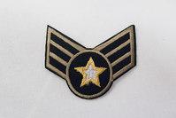 Army badge with goldstar 4 x 5 cm
