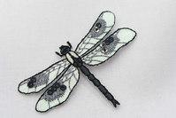 Dragonfly 6 x 4 cm
