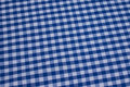 Blue and white 1 cm checks in recycled cotton.