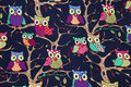 Dark navy, woven cotton with owls.