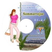CD-rom no. 27 - Summer leaving