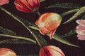 Tulip Head is ca. 8 cm.