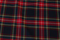 Clan checks with stretch in dark navy and red