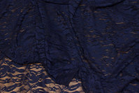 Navy, light stretch lace