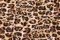 Viscosejersey with cheeta print in black and golden. 11,92