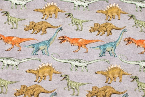 Light grey cotton-jersey with dinosaurs